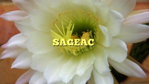SAGEAC