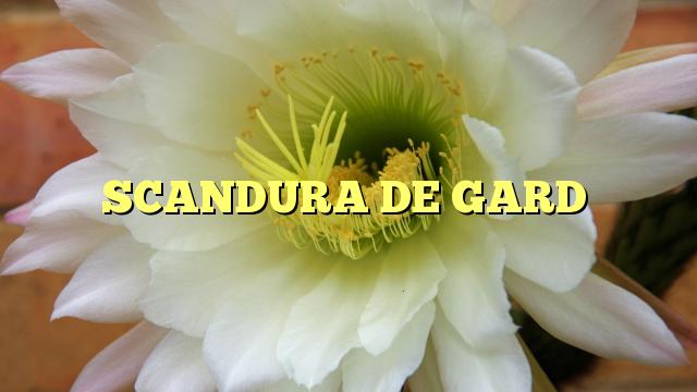 SCANDURA DE GARD