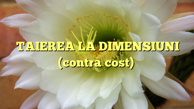 TAIEREA LA DIMENSIUNI (contra cost)